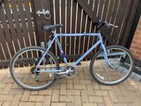 Raleigh memphis '80s retro bike