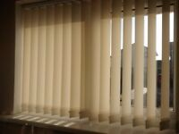 Ivory vertical blinds