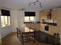 Stunning 2 Bed 2 bath apartment / flat ¦¦ CANNING TOWN ¦¦ 30 SECONDS WALK from DLR ¦ DON'T MISS!!