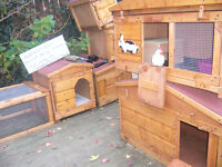 "dog kennel robust and germ free ...24""x 24"" worth viewing"