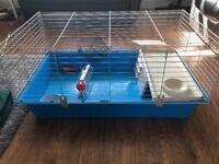 Indoor rabbit hutch and run