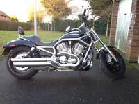 Harley Davidson VRSCA V-Rod