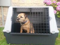 Dog / pet carrier / box