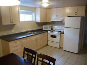 Holly Street Student Rental  - Four Bedrooms House for Rent Kitchener / Waterloo Kitchener Area image 4