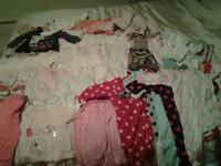 Baby girl 67 piece clothing bundle aged 3-6 months