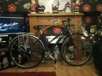 Raleigh basket bike