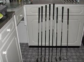 Bay Hill Ladies Right Hand Golf Clubs