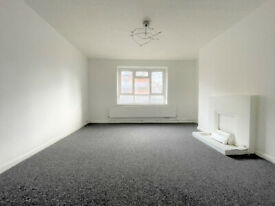 Large newly decorared 2/3 bed property in the heart of Old Street N1.