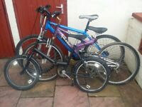 3 x bicycles: Ladies Raleigh, Mens Muddyfox and Universal Stoweaway fold up bike blue black purple