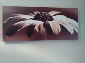 Wall art picture