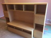 TV & Shelving Unit