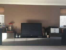 Large TV / Storage System