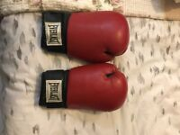 Everlast Leather Boxing Gloves 18oz For Sale