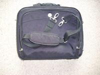 Used but in excellent condition. Original Dell laptop bag