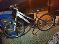 Raleigh Bicycle Purple Ladies, 7 Gears,