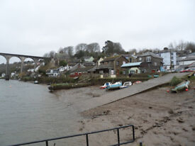 Two bedroomed bungalow offered for rent - on riverside, Calstock
