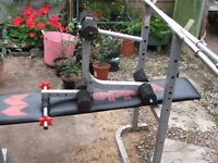 weight bench and an assortment of weights