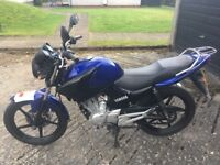 2012 Yamaha YBR 125cc