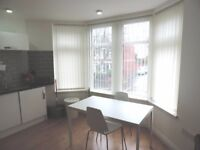 Albany Road, Roath Modern Spacious Newly Refurbished First Floor 1 Bed flat **Incl water and wifi**