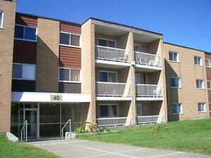 Available today! Lovely 2 bdrm on Macdonald Drive!