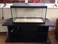 56l aquarium fish tank for sale. With heater,filter,light.