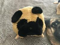 Brand new pug teddys 1 with hand warmers