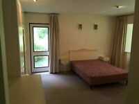 SB Lets are delighted to offer this very large, fully furnished en suite double room to let in Hove