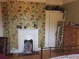 Large double bedroom on Earlham Road