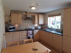 Large Double room with En-suite - Fully Furnished - available from 07/01/2018