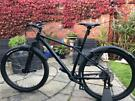 GT Avalanche Expert '2019 29er Large frame in Excellent condition