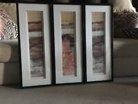 3 Framed Canvas