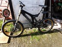 Mountain bike- Specialised Downhill