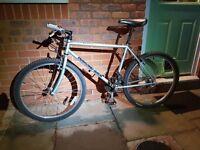 Diamond Back - Topanga 21 speed Mountain Bike