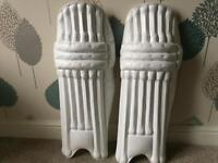 Pro unbranded cricket pads and gloves