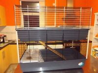 Indoor Cage for Rabbits & Guinea Pig (2 tiered)