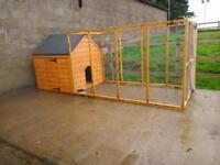 Dog kennel & run