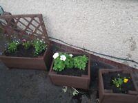 HANDMADE reclaimed wood planters set of 3 incl flowers