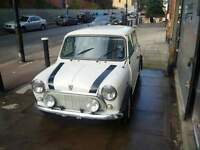 Classic Mini Italian job car