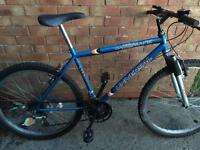 """Men's mountain bike 18"""" frame"""