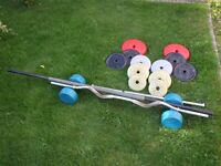 Free Weights (metal and plastic) with 2 bars and Pullup bar (will sell separately)