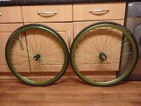 Green 700c singlespeed/Fixie wheel