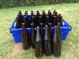 Three dozen beer bottles.