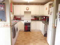 House Exchange - 4 Bed Honiton, Devon - Want 4 Bed in Taunton