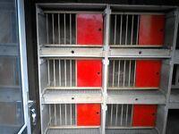 pigeon nest boxes
