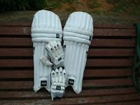 Gunn & Moore Boys Cricket Pads and gloves