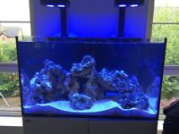 Red Sea Reefer Deluxe 250 Marine Tank with Live Rock and Corals