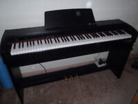 Digital Piano. As New. Chase CDP-240R/B. Includes oak frame cushioned piano stool