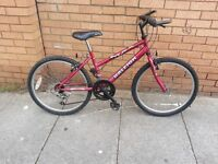 Raleigh unisex Bike with 24 inch wheel