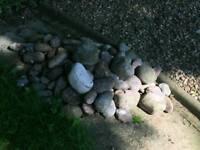 Free garden pebbles