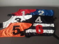 GREYHOUND RACE SETS 1-6